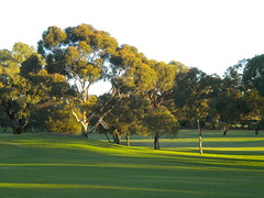 Diamond Back Golf Course, Diamond Back Course