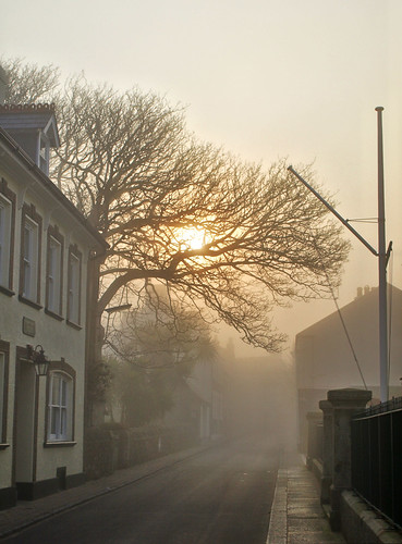 street tree sunrise geotagged for alderney channelislands englishchannel geo:lat=49714627 geo:lon=2205589