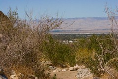 View over Palm Springs