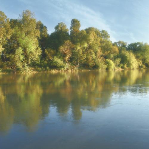 Yazoo Stream Flickr: The Greenwood,...