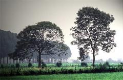 province Noord-Brabant