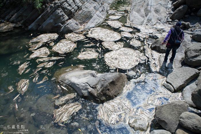 台南私藏景點--關山千層岩瀑布、幽情瀑布 (39)