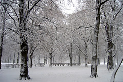 Winterzeit / wintertime