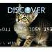 Cat Design Credit Card: Sweet Sally