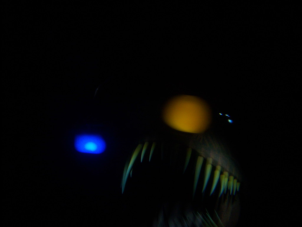 Scary angler fish on finding nemo submarine voyage a for Finding nemo angler fish