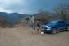 Sierra de la Laguna-1021