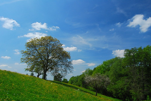sky cloud tree countryside spring nikon ciel nuage campagne arbre printemps septfontaines 25faves d40x
