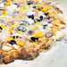 Thin Crust Pizza with organic goat mozzarrella, mushrooms, olives and yellow pepper