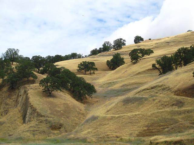 Rolling hills at Wilbur Hot Springs Nature Preserve