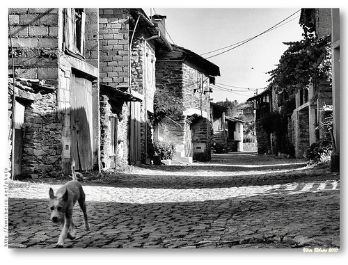 Rua de rio de Onor (b/w) by VRfoto