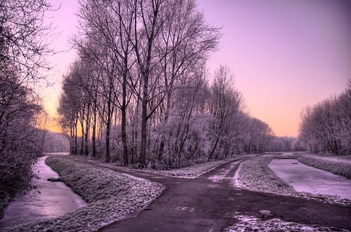 trees sky cold ice crossing freezing roads hdr roadcrossing bikepaths 3exp foottrails