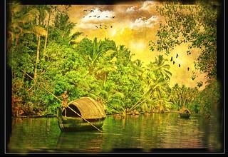 Indian Jungle ... Kerala