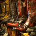 Cowboy Boots (Exhibition Crop)