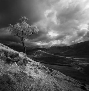 Gualachulain, Scotland
