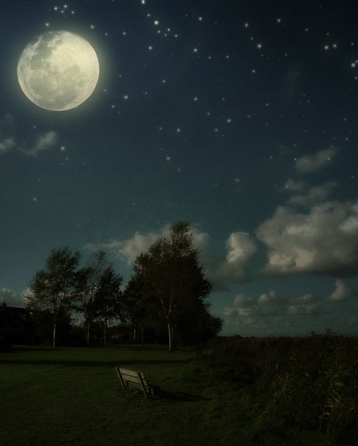 * Moonlit Bench *