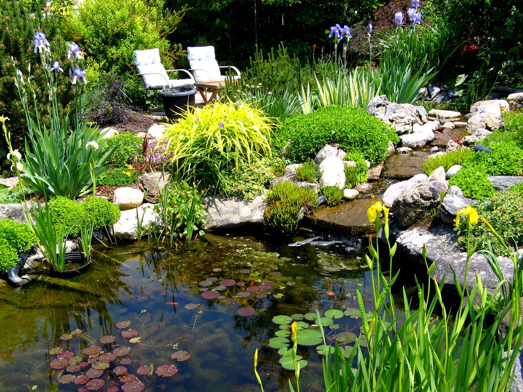 Gorgeous pond and water feature