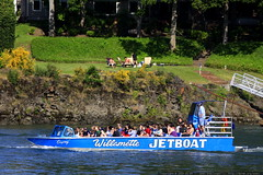 willamette jetboat cruising past a family in their r…