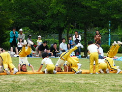 weight training(0.0), sports(0.0), tug of war(0.0), chinese martial arts(0.0), physical fitness(1.0), picnic(1.0),