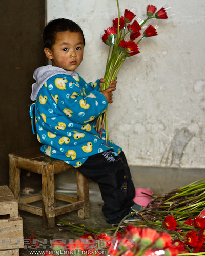 Chinese boy sorts flowers