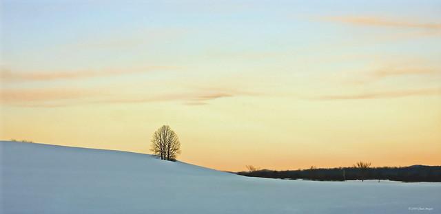 A Pastel Morning