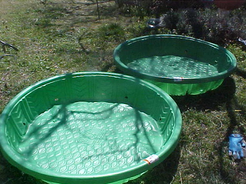 Wading Pools Ready to Plant