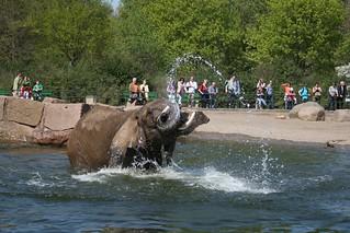 20090415_Tierpark Berlin_063