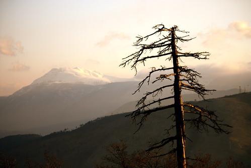 sunrise tramonto day cloudy albero sanpietro viglio albe marsica albafucens monteviglio