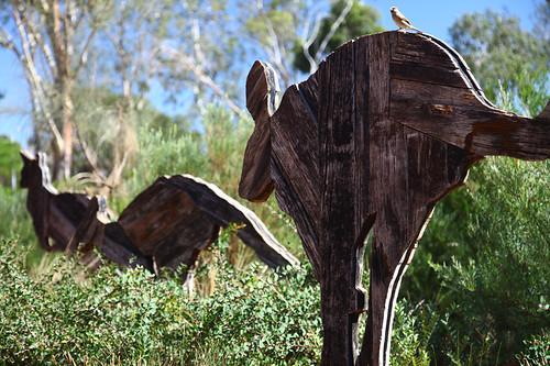 Wood kangaroos