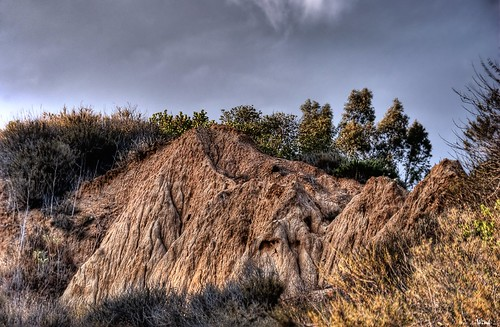 california brown mountain tree rock explore dirt fp hdr ventura photomatix sigma18200 nikond80 topazadjust