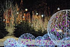 christmas decoration at champs elysee