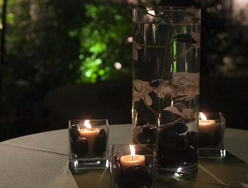 Taniesha 39 s blog they had beta fish in their centerpieces for Fish wedding centerpieces