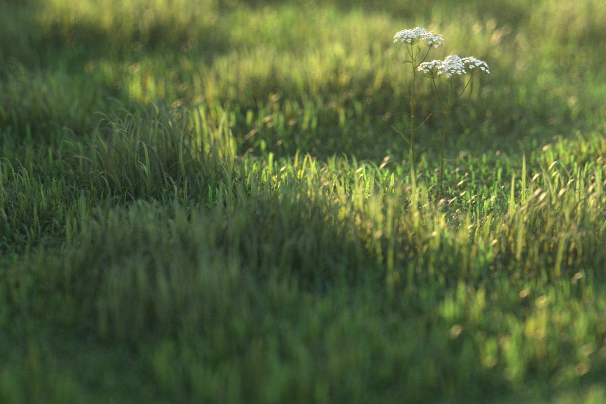 Vray grass tutorial part 2 — PETER GUTHRIE