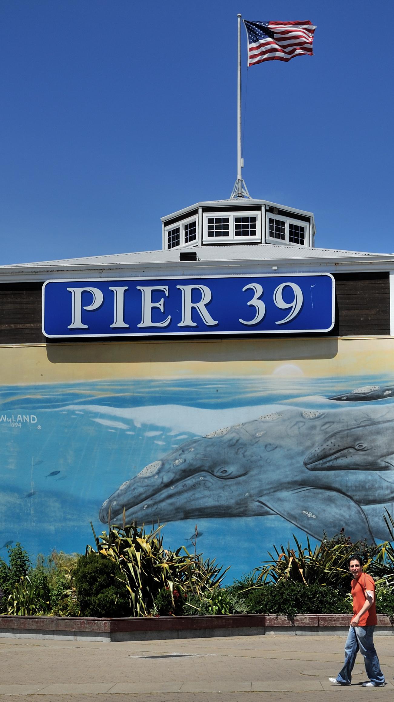 Aquarium Of The Bay On Pier 39 Explore Manohard 39 S Photos