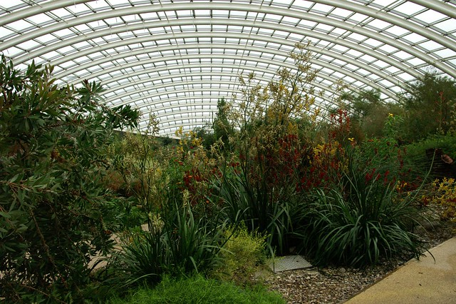 The Great Greenhouse