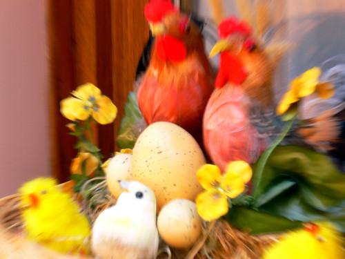 Le nid et les oeufs