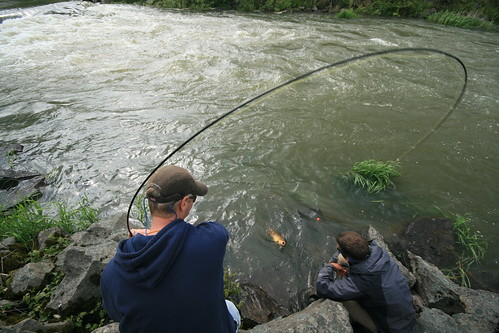 Local rivers blown out now is a great time for carp on for Fishing eugene oregon