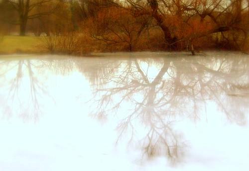 ohio cleveland kirtland holdenarboretum corninglake wateroniceverynice
