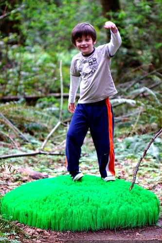 nick on the supersize astroturf environmental art    MG 0790