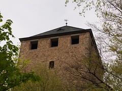 Burgfried über den Bäumen