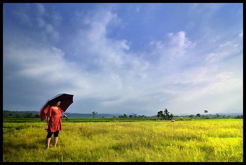 sunshine indonesia landscape nikon sigma westjava d300 105mm elsi explored jonggol colorphotoaward multimegashot sigma105mmexdgf28 daarklands addictedtohighquality