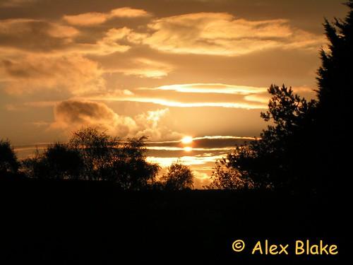cloud tree sunrise dawn