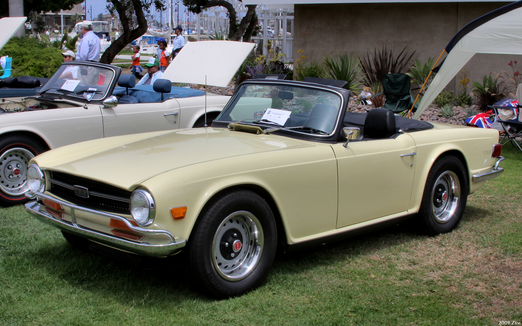 1970 triumph tr6 images pictures and videos. Black Bedroom Furniture Sets. Home Design Ideas