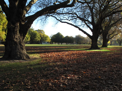 Hagley Park, Christchurch New Zealand
