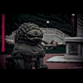 Chinese Garden 在 埃德蒙顿 附近 的形象. park bridge canada statue stone edmonton lion ab chinesegarden rivervalley louisemckinneypark nikkorafs105mmf28gifedvrmicro