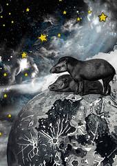 Tapir | the Κόσμος Edition | v4