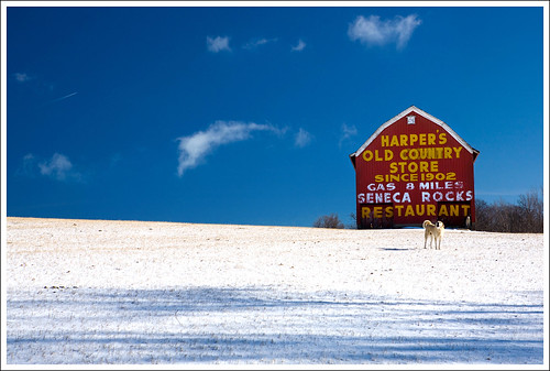 snow dogs barn westvirginia canaanvalley anawesomeshot impressedbeauty harpersoldcountrystore