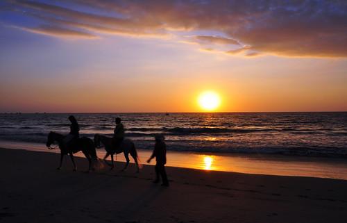 ocean sunset horses naturaleza beach peru southamerica nature landscape atardecer caballos nikon pacific playa paisaje riding mancora d90 javierelias