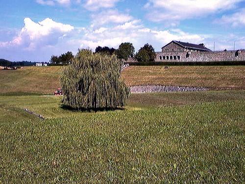 austria memorial jewish 2008 kz lager mauthausen deportazione noreflex campodiconcentramento campodisterminio marioghezzi