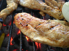 fish(0.0), seafood(0.0), souvlaki(0.0), chicken meat(1.0), roasting(1.0), grilling(1.0), meat(1.0), food(1.0), dish(1.0), cuisine(1.0), cooking(1.0), grilled food(1.0),