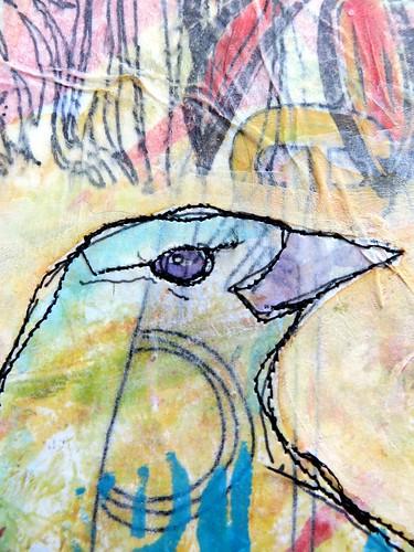 Bird Drama